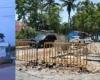 Indignación y asombro entre riosanjuaneros al ver que se construyen baños en plena calle de entrada a playa Los Mino