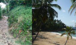 Ven accionar empresa Playa Grande Holdings refleja que playa Preciosa está privatizada
